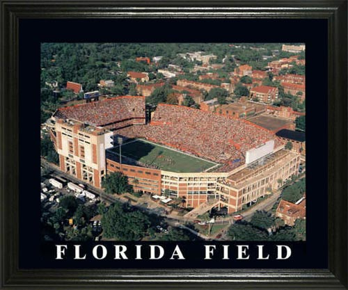 College - Florida Gators - Florida Field Aerial - Lg - Framed Picture
