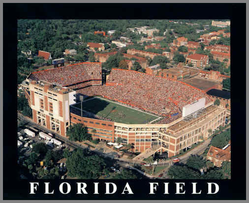 College - Florida Gators - Florida Field Aerial - Lg - Plaque Mounted & Laminated Print