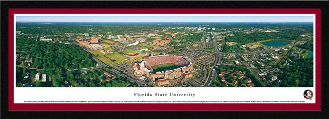 College - Florida State Seminoles - Doak S Campbell Stadium - Framed Picture