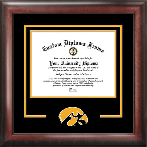 College - University of Iowa Hawkeyes - College Mascot - Spirit Mat Cutout - Diploma Frame
