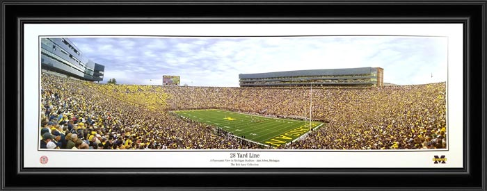 College - Michigan Wolverines - 28 Yard Line - 2010 - Framed Picture