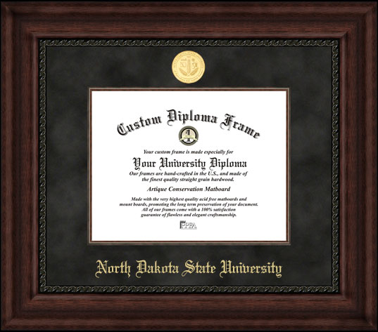 College - North Dakota State University Bisons - Gold Medallion - Suede Mat - Mahogany - Diploma Frame