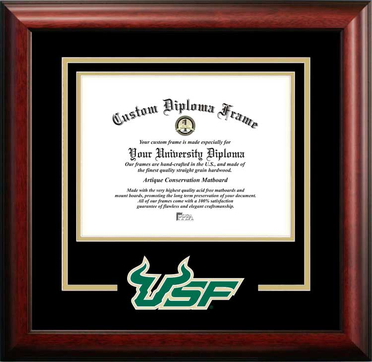 College - University of South Florida Bulls - College Logo - Spirit Mat Cutout - Diploma Frame