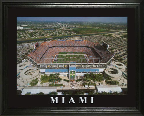 NFL - Miami Dolphins - Dolphins aka Pro Player Stadium - Lg - Framed Picture