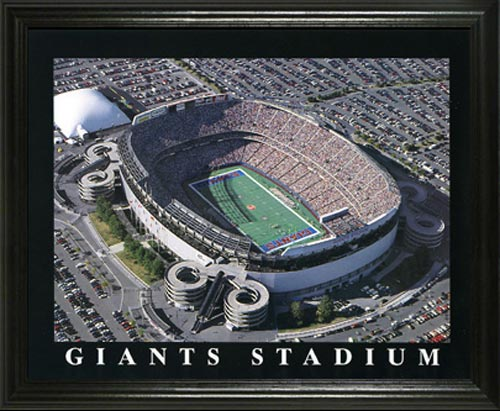 NFL - New York Giants - Giants Stadium Aerial - Lg - Framed Picture