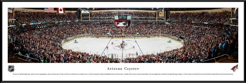 NHL - Phoenix Coyotes - Gila River Arena - Framed Picture