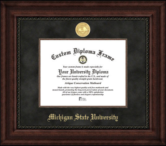 College - Michigan State University Spartans - Gold Medallion - Suede Mat - Mahogany - Diploma Frame