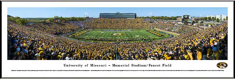 College - Missouri Tigers - The Zoo - Gold Rush 2013 - Framed Picture