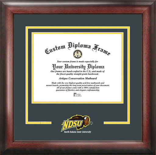 College - North Dakota State University Bisons - College Mascot - Spirit Mat Cutout - Diploma Frame