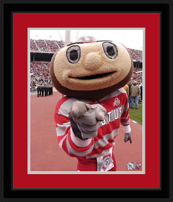 College - Ohio State Buckeyes - Brutus Buckeye - Pointing - Framed Picture