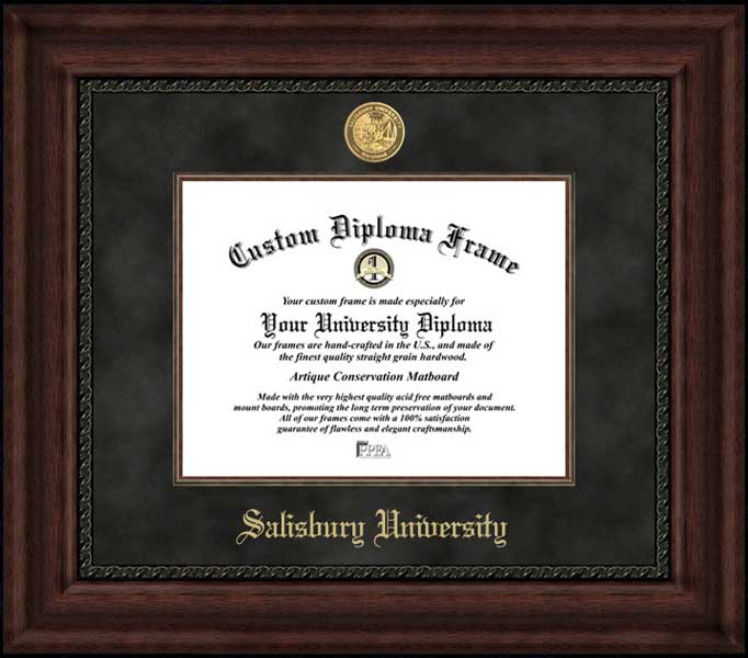 College - Salisbury University Sea Gulls - Gold Medallion - Suede Mat - Mahogany - Diploma Frame