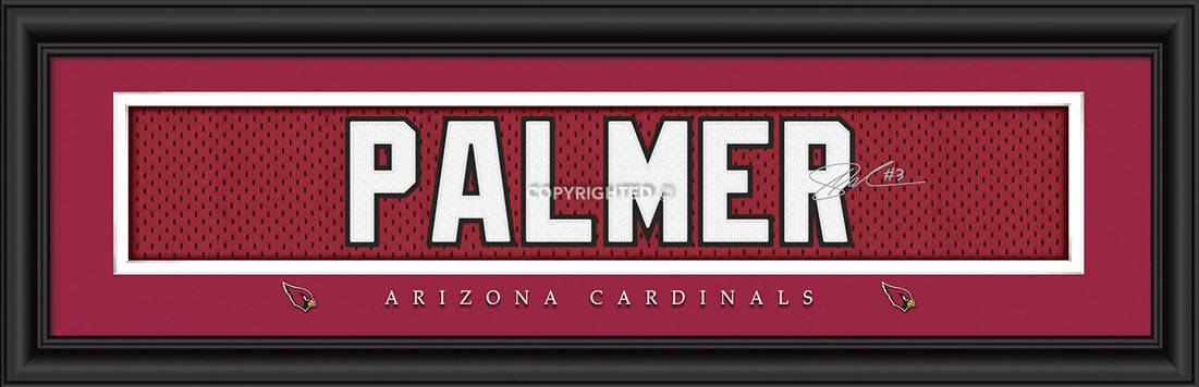 NFL - Arizona Cardinals - Signature Jersey Nameplate - Carson Palmer - Framed Picture