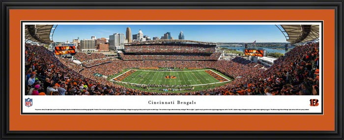 NFL - Cincinnati Bengals - Paul Brown Stadium - Framed Picture
