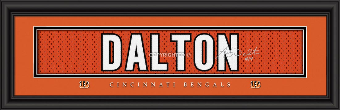 NFL - Cincinnati Bengals - Signature Jersey Nameplate - Andy Dalton - Framed Picture