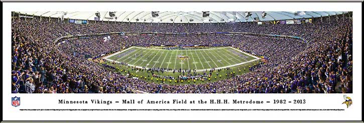 NFL - Minnesota Vikings - HHH Metrodome - Final Game 2013 - Framed Picture