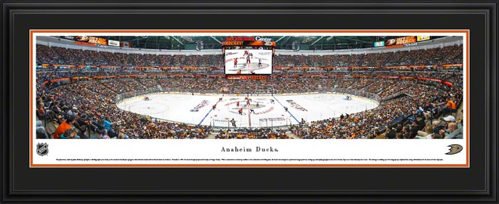 NHL - Anaheim Ducks - Honda Center - Framed Picture